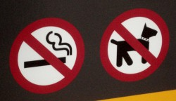 no_smoking_dog