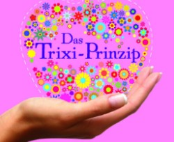 trixi_prinzip_minicover