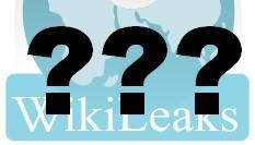 wikileaks_fragezeichen