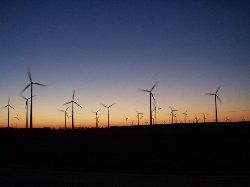 windpark_sunset
