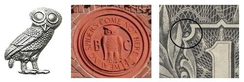 owls_three_times_498