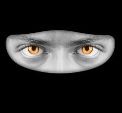 masked_face