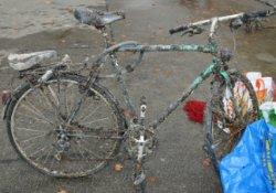 muschel_fahrrad