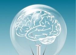 brain in lightbulb