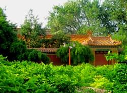 china jingshan park