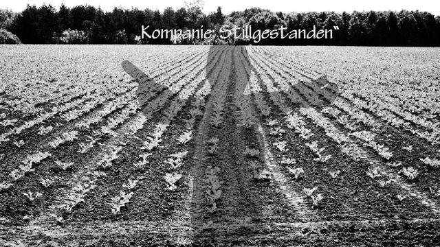 Kompanie-Monkulur